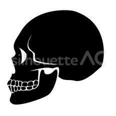 頭蓋骨のシルエットイラスト