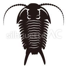 三葉虫のシルエットイラスト