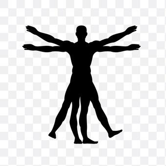 ウ ィ ト ル ウ ィ ウ ス of the human body map