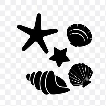 贝类和海星