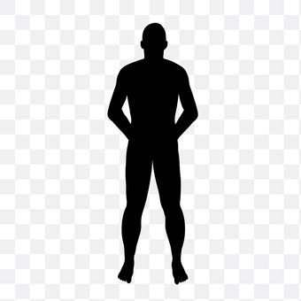 Normal body type
